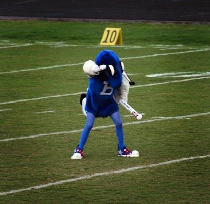 Buzz, aka Kyle Douglass, at work during a Hornets football game.