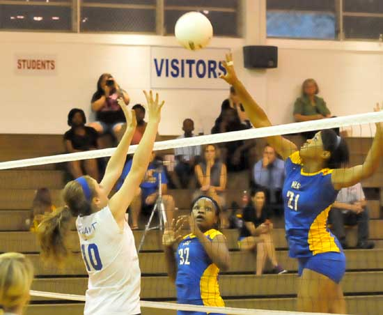 Bryant's Alyssa Anderson (10) goes up for a block. (Photo by Kevin Nagle)