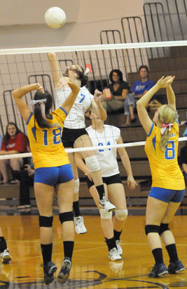 Courtney Davidson (7) prepares to spike the ball. (Photo by Kevin Nagle)