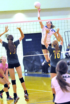 Allie Anderson (6) attacks high above the net. (Photo by Kevin Nagle)